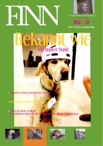 Finn im Einsatz - Foto der Woche 29.12.2014-04.01.2015